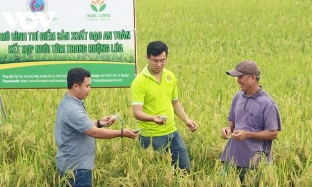 Trà Vinh: nhiều thanh niên khởi nghiệp thành công với nông sản