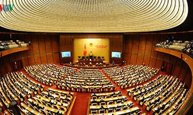Half time of National Assembly's 9th plenary session to be held online