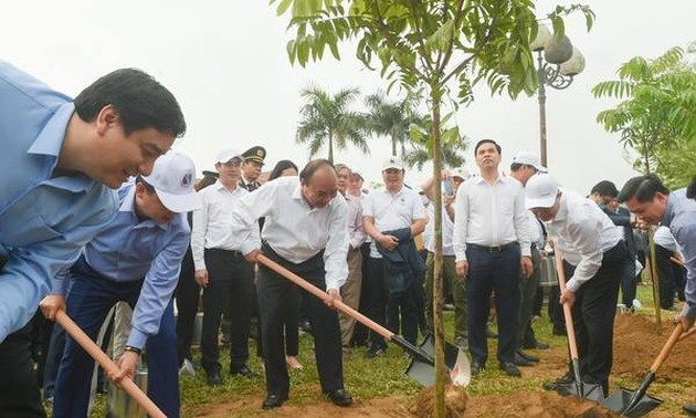 Prime Minister encourages Nghe An's tree planting, works with provincial leaders