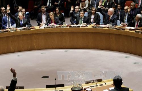 ООН глубоко озабочена ситуацией на Востоке Украины