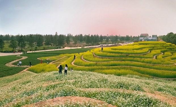 В Ханое появятся два новых туристических места в уезде Данфыонг
