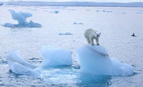 22 апреля откроется онлайн-саммит по вопросам изменения климата