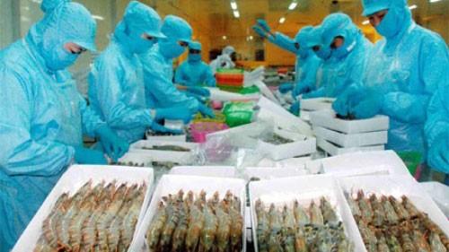 US imposes anti-subsidy tariff on Vietnamese frozen shrimp