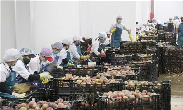 Vietnam's strategy to ensure long-term growth lauded