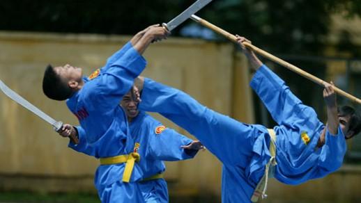 Promueven arte marcial vietnamita en Argelia