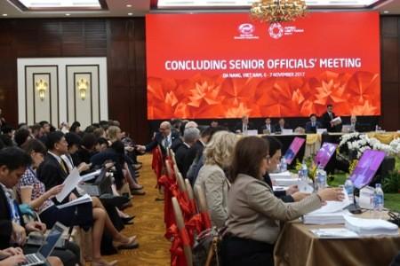 Inauguran la Semana de la Cumbre del APEC 2017 en la ciudad centrovietnamita de Da Nang