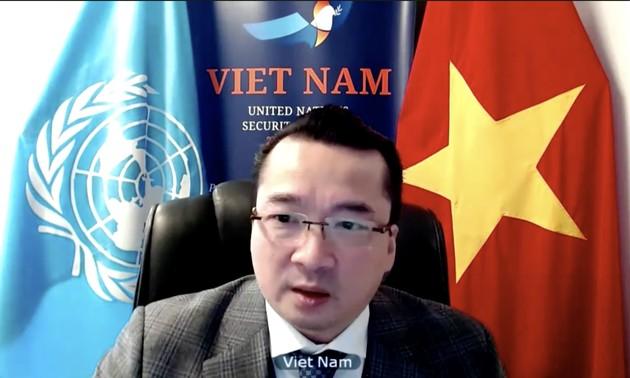 El representante vietnamita en el Consejo de Seguridad de la ONU llama al apoyo a Yemen