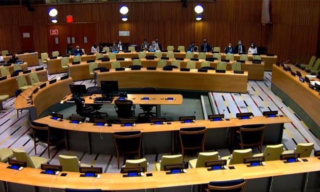 Vietnam aporta al debate del Consejo de Seguridad sobre la situación humanitaria en Etiopía
