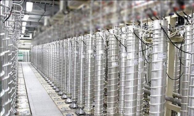 AIEA : l'Iran a repris l'enrichissement de l'uranium
