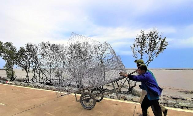 Nguyên Thanh Tuân, le gardien des digues de Cà Mau