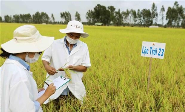 Labelliser les produits de terroir du delta du Mékong