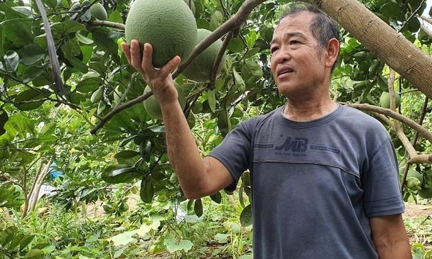 Nguyên Quang Toàn, un vétéran généreux
