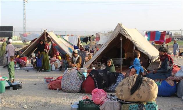 Afghanistan: l'ONU appelle au dialogue avec les Talibans pour faciliter l'aide humanitaire