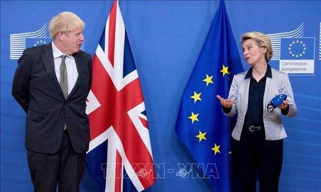 UK, EU to continue Brexit negotiations