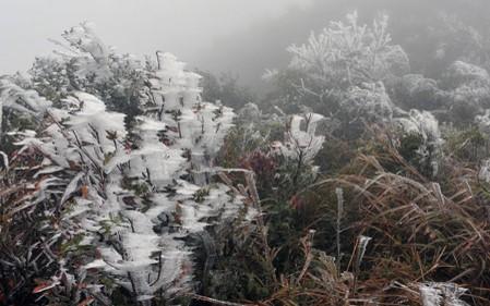 Mẫu Sơn nhiệt độ âm 2 độ C, nhiều khả năng Sapa sẽ có mưa tuyết