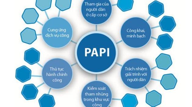 Chỉ số PAPI tiếp tục tạo ra những hiệu ứng đáng kể ở cấp tỉnh và cấp quốc gia