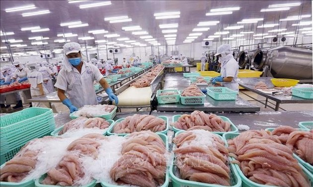 Vietnam's seafood export on track to 9 billion USD mark in 2021