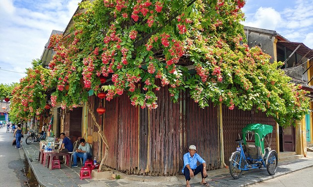 Hoi An allows eateries to reopen with safeguards