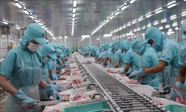 Экспорт вьетнамских морепродуктов будет быстро восстановлен
