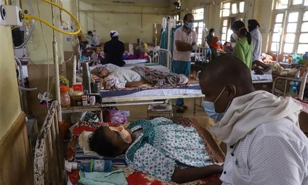 В мире более 174,7 млн человек заразились COVID-19