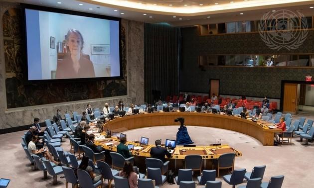 Совет безопасности ООН провел открытую дискуссию по оценке эффективности своей работы на фоне коронавируса