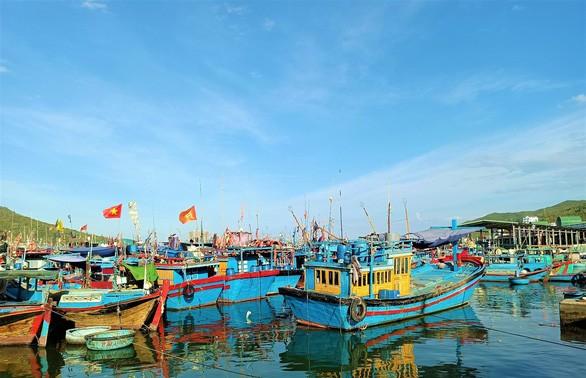 Восстановлена работа крупнейшего рыбного порта в южной части Центрального Вьетнама