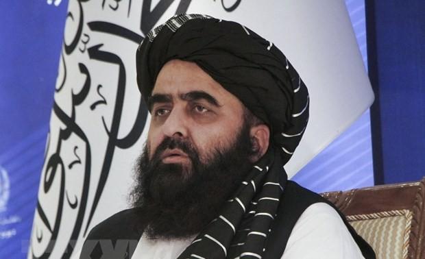 Делегация «Талибана» прибудет в Россию для обсуждения ситуации в Афганистане