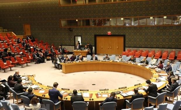 Nhật Bản tin tưởng Việt Nam sẽ có đóng góp tốt cho Hội đồng Bảo an Liên hợp quốc