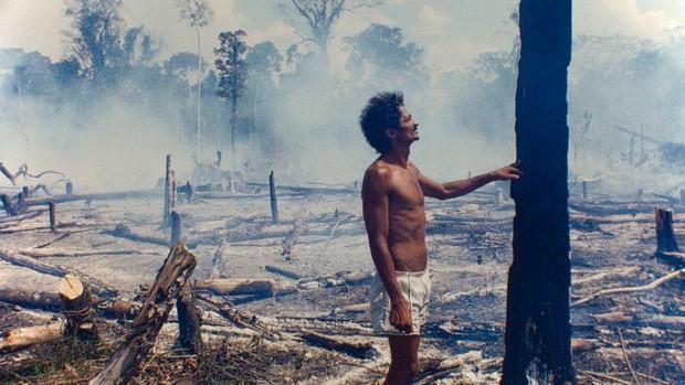 Cháy rừng Amazon không còn là chuyện riêng của từng quốc gia