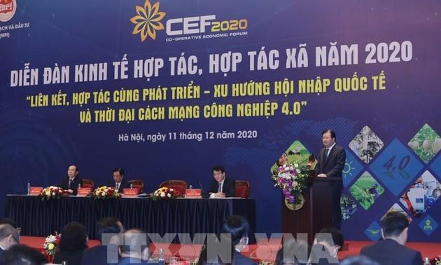 Diễn đàn kinh tế hợp tác, hợp tác xã năm 2021 dự kiến diễn ra trong quý III/2021