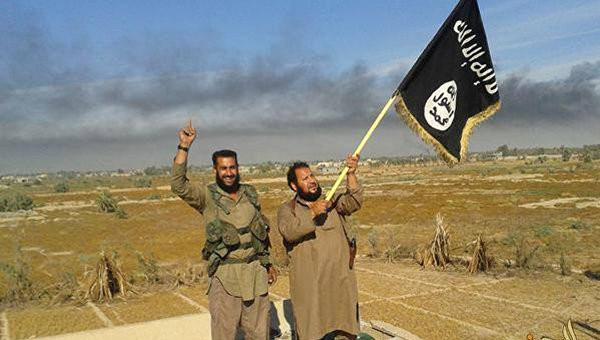 ИГ потеряло 40% территорий в Ираке и 20% в Сирии