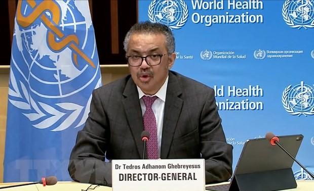 Руководители многих стран призвали к разработке международного договора по повышению готовности к глобальным пандемиям