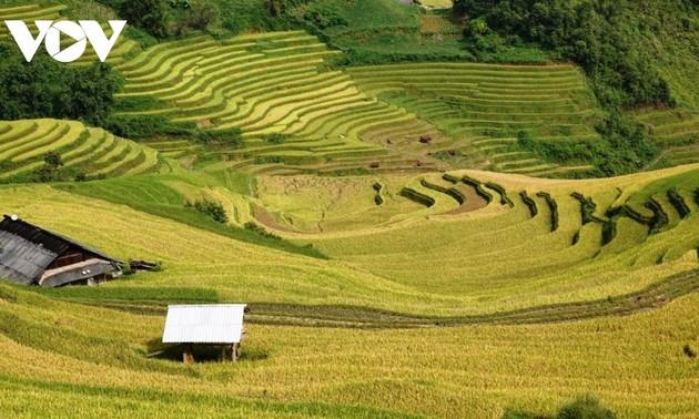 Giới thiệu về phần trả lời tốt nhất cho câu hỏi số hai của cuộc thi Bạn biết gì về Việt Nam