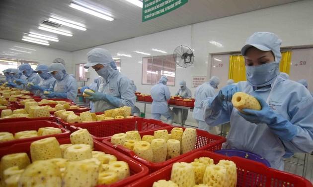Phê duyệt Đề án phát triển ngành chế biến rau quả giai đoạn 2021 - 2030