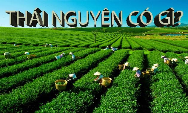 Ứng dụng công nghệ thông tin quảng bá, xúc tiến du lịch tại Thái Nguyên
