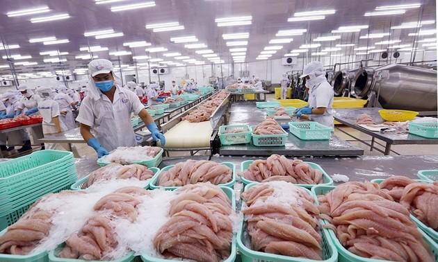Nông sản, thực phẩm Việt Nam được ưa chuộng tại thị trường Trung Quốc