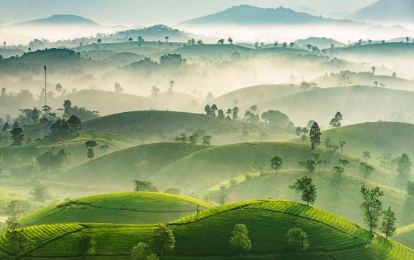 Вьетнам завоевал много международных наград в области фотоискусства