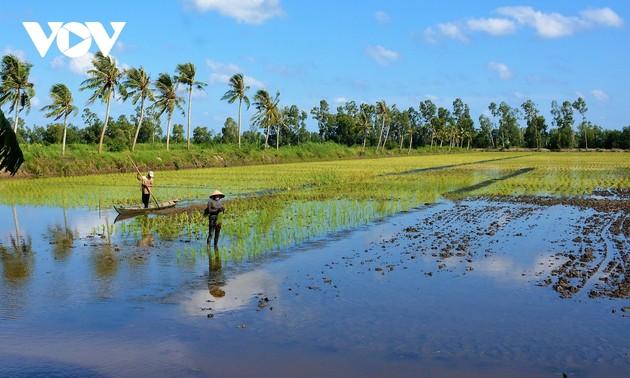 Mekong River Delta moves toward prosperity, sustainability