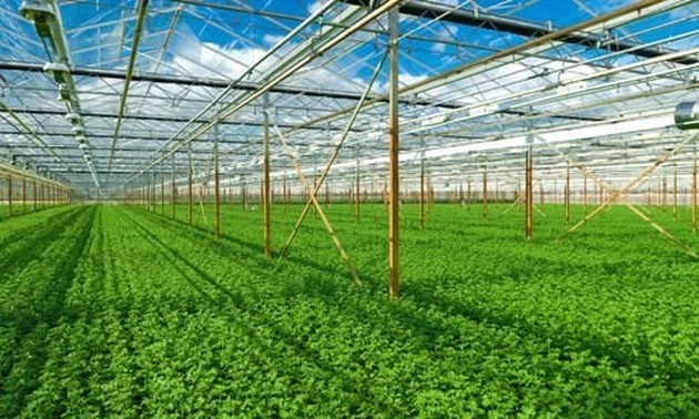 Greening agriculture