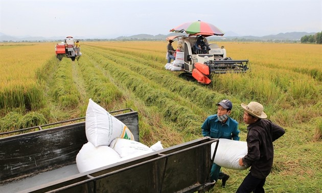 Vietnam rakes in 34 billion USD from agricultural, seafood products