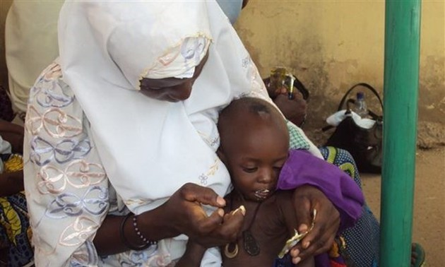 UN calls for immediate action to tackle food insecurity