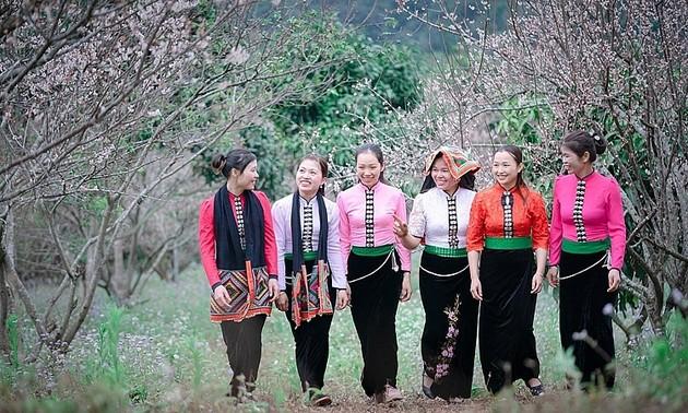 Descubrir la Zona Turística Nacional de Moc Chau