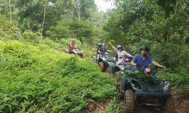 Driving all-terrain vehicles through the forests of Dong Mo