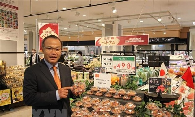 Trade conference introduces Vietnam's farm produce to Japan