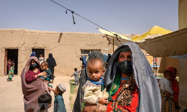 20 countries issue joint statement on situation of women and girls in Afghanistan