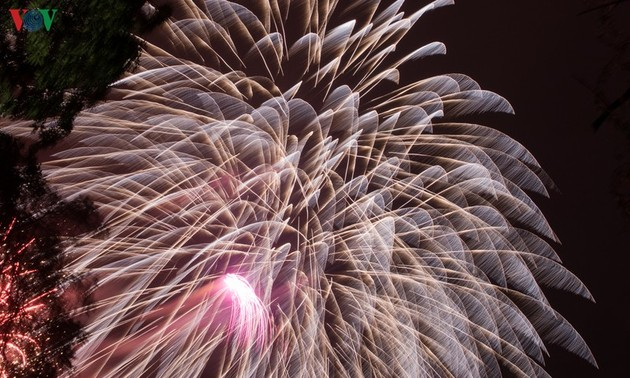 Vietnam rings in Year of the Rat with fireworks extravaganza