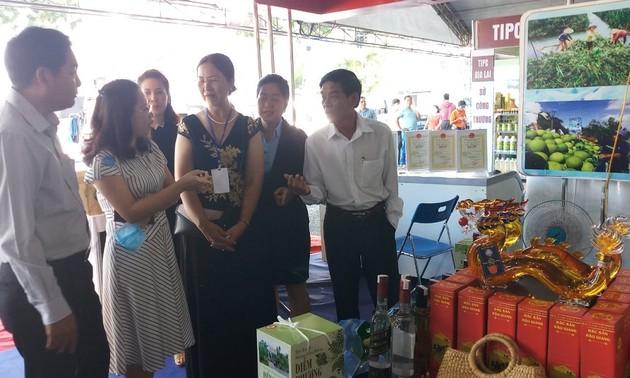 胡志明市和南部地区开展合作