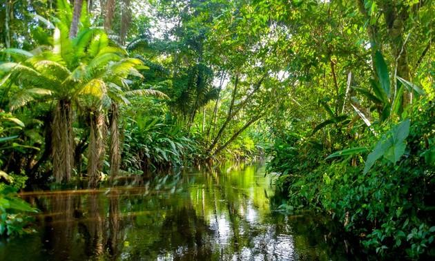 Vietnam nimmt an Gipfelkonferenz der Partner für grünes Wachstum und globale Ziele 2030 teil