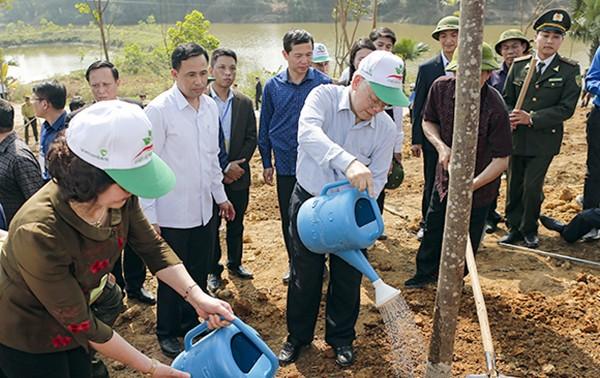 Festival de la Siembra de Árboles beneficia a Vietnam