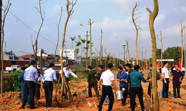Localidades vietnamitas inauguran Festival de Siembra de Árboles